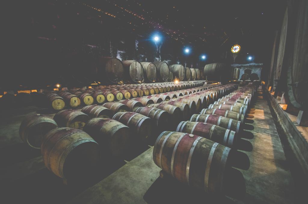 winnica_dfj-vinhos